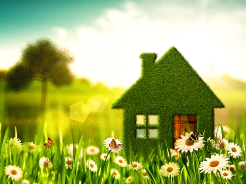 Embracing green living in your home